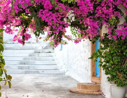 pink-world-travel-greece-santorini-greek-travelblog.jpg0